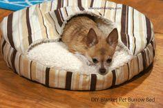 DIY Blanket Pet Burrow Bed Tutorial; Dog Bed