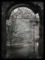 Deep Silence Outside by IrondoomDesign