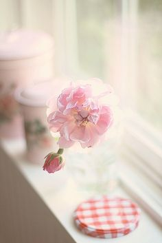 the window sill by lucia and mapp, via Flickr