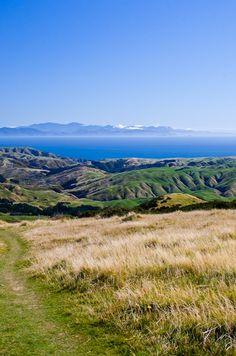 From Mount Kaukau towards South Island New Zealand
