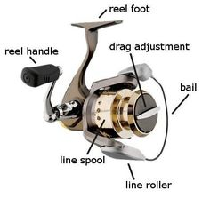 Read complete reviews of Spinning Reels & find the Best Spinning Reel in the web page.we don't sell,we only provide honest reviews for caring parents.
