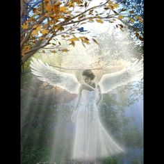 Beautiful Nature Scenes, Beautiful Fantasy Art, Beautiful Gif, Beautiful Fairies, Angel Images, Angel Pictures, Jesus Pictures, Beautiful Angels Pictures, Gardian Angel