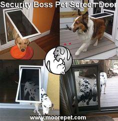 Superior Performance Pet Screen Door for Sliding Screen Doors Pet Dogs, Dogs And Puppies, Dog Cat, Chihuahua Dogs, Doggies, Pet Screen Door, Dog Training Equipment, Pet Life, Cool Pets