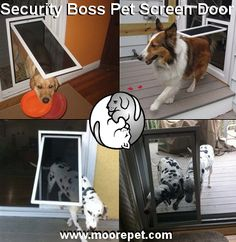 """The Security Boss """"Bug Proof"""" Pet Screen Door lets the fresh summer breeze in, while allowing your dog in and out!  http://www.moorepet.com/Security-Boss-Pet-Screen-Door-Sliding-Screens-p/sb-screen.htm"""