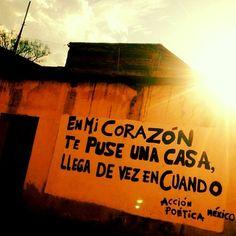 Acción poética Mexico #Acción Poética México #accionpoetica