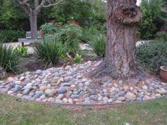 stones around tree - Google Search