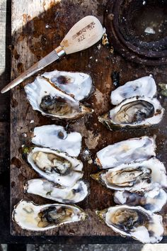 Picnicking at Tomales Bay Oyster Company - Hither & Thither