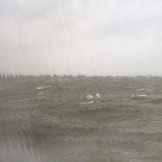@willemhendriks Op de woelige baren. #doeksen #storm #harlingen #terschelling