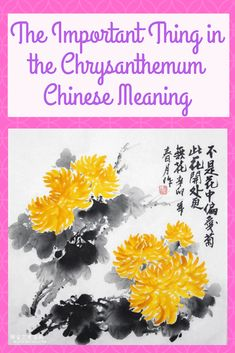 The Important Thing in the Chrysanthemum Chinese Meaning Chrysanthemum Meaning, Chrysanthemum Chinese, Chinese Culture, Orchids, Meant To Be, Bloom, Flowers, Royal Icing Flowers, Flower