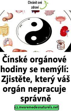 Čínské orgánové hodiny se nemýlí: Zjistěte, který váš orgán nepracuje správně Reiki, Health Fitness, Food And Drink, Detox, Drinks, Healthy, Medicine, Astrology, Health