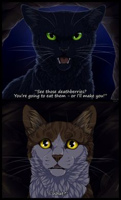 Hollyleaf and Leafpool.o And who said Warrior Cats was a kid book? I'm trying not to leave this fandom yet. Warrior Cats Quotes, Warrior Cats Funny, Warrior Cats Comics, Warrior Cats Series, Warrior Cats Books, Warrior Cats Fan Art, Warrior Cat Drawings, Cat Comics, Cat Quotes