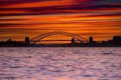 In addition to Bondi, Mr Glick said he also enjoys taking incredible photos such as this o...