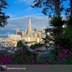 #SanFrancisco -How do you make a great first impression?  #Job #VideoResume #VideoCV #jobs #jobseekers #careerservices #career #students #fraternity #sorority #travel #application #HumanResources #HRManager #vets #Veterans #CareerSummit #studyabroad #volunteerabroad #teachabroad #TEFL #LawSchool #GradSchool #abroad #ViewYouGlobal viewyouglobal.com ViewYou.com #markethunt MarketHunt.co.uk bit.ly/viewyoupaper #HigherEd