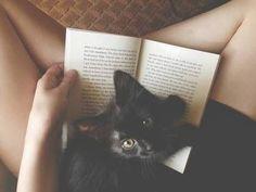 A Dona do Gato Preto: Ai saudade saudade...