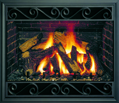 Mendota Hearth gas fireplaces and gas fireplace inserts off many doors and fronts to choose from. Find the fireplace front or door that matches your style. Fireplace Fronts, Fireplace Inserts, Gas Fireplace, Timeless Design, Hearth, Design Model, Doors, Log Burner, Puertas