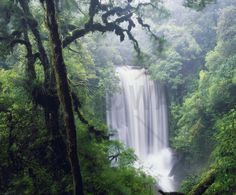 Waterfall in the Rain - Wall Mural & Photo Wallpaper - Photowall