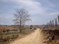 O caminho do Monte. Mairi/BA/BR