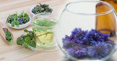 cz - Strana 2 z 34 Wine Glass, Glass Vase, Korn, Terrarium, Table Decorations, Tableware, Home Decor, Author, Homemade Home Decor
