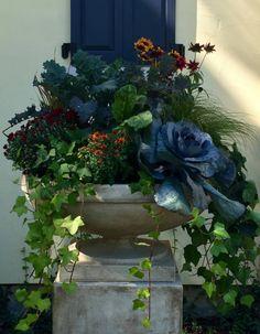 Scentimental Gardens