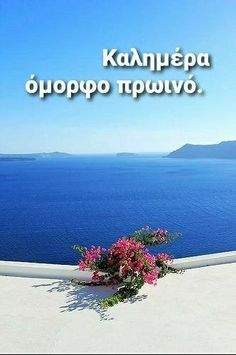 Good Morning Messages, Good Morning Quotes, Beautiful Pink Roses, Greek Quotes, Wonderful Images, Cool Photos, Greece, Funny Quotes, Emoji