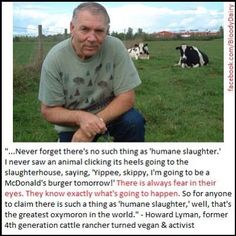 ...there is fear in their eyes...no animal says yippee I'm going to the slaughterhouse... Howard Lyman