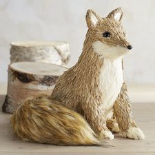 Natural Fox with Furry Tail