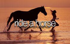 grew up riding them as my mom always had horses.