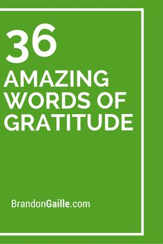 36 Amazing Words of Gratitude Thank You Card Sayings, Thank You Phrases, Sympathy Card Sayings, Thank You Note Wording, Greeting Card Sentiments, Sympathy Messages, Thank You Quotes For Coworkers, Greeting Cards, Letter Of Gratitude