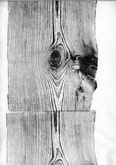 Wood print by Martha Richter. Think about using shaped wood (or other natural materials!) to create an image.