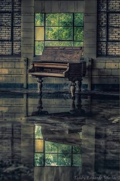 Old piano left standing alone as the elements reclaim its home.