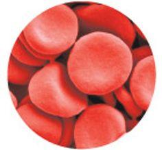 body blood cells
