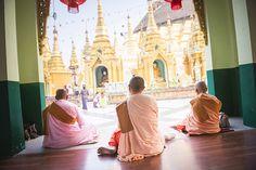 Buddhist Nuns praying at Shwedagon Pagoda (Shwedagon Zedi Daw) (Golden Pagoda), Yangon (Rangoon), Myanmar (Burma), Asia