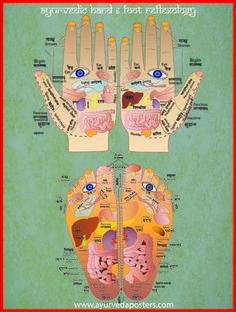 reflexología de manos y pies