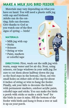 Here's a fun weekend project! Grab a milk jug out of the recycle bin, wash it out, and invite some birds over!