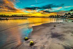 """The Bathtub JIC"" Jupiter Florida. palm trees. sunset. yellow. blue."