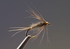 Blue Dun Flymph - posted in Coldwater Species: I have been showing these at the tying events this year.  Hook: #14-#18 Thread: Pearsalls gossamer silk thread, primrose, waxed Hackle: medium dun hen Tail: medium dun hen Body: natural mole twisted within the thread