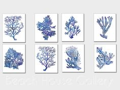Indigo Blue Coral Prints, Blue Sea Coral Print Set of Eight, Coral Wall Art, Coral Print, Sealife print Blue White, Set of 8, Blue Coral