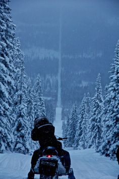 Snowy Road at Norway Sweden Border