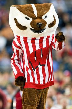 Google Image Result for http://thesportsinquirer.files.wordpress.com/2011/08/wisconsin_badgers-bucky-badger-mascot.jpg