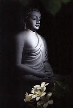 Buddha - Boeddha So peaceful, so beautiful Lotus Buddha, Art Buddha, Buddha Zen, Gautama Buddha, Buddha Buddhism, Buddhist Art, Buddha Painting, Zen Meditation, Les Religions