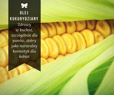 Olej kukurydziany ma wiele cennych właściwości. W kuchni jest zdrowy, szczególnie dla mężczyzn, a dla pań będzie przydatny jako naturalny kosmetyk.