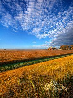 Good Day Sunshine Photograph by Phil Koch