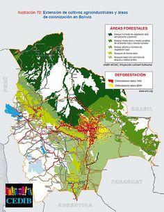Extensión de cultivos agroindustriales y áreas de colonización en Bolivia