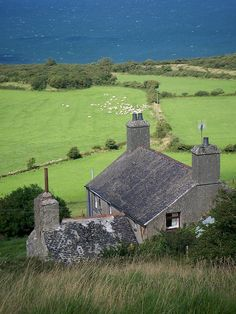 Welsh sheep farm, Anglesey, Wales Try Celtic Trails walking tours. (Midsection of Wales includes Machynlleth too! Welsh Cottage, Wales Uk, North Wales, England Ireland, Sheep Farm, British Countryside, British Isles, Farm Life, Great Britain