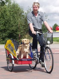 www.specialbikes.at - Tandems - Dog Spacer