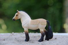 MH$P Ad: OFFERS: Custom Connemara Stallion