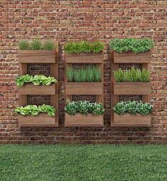 Vertical Gardens - Once you've designed your garden, pick the plants that you want to grow during each season. There's no better solution than to bring a vertical garden. While arranging a vertical garden… Vertical Herb Gardens, Vertical Garden Diy, Vertical Planter, Herb Planters, Outdoor Wall Planters, Planters On Fence, Pallet Planters, Raised Planter, Planter Ideas