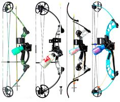 Field Test: Best Bowfishing Rigs | Field & Stream