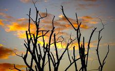 19 best tujunga images on pinterest hiking trails golf courses tujunga california sunset solutioingenieria Gallery