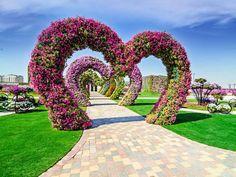 Flores formam coração no Miracle Garden, em Dubai (Foto: Divulgação/Miracle Graden)